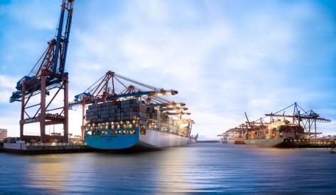 Waltershofer Hafen in Hamburg mit Containerschiffen